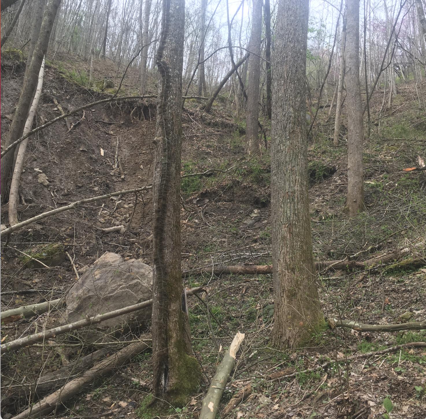 Landslide story
